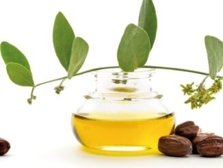 Benefici Olio di Jojoba